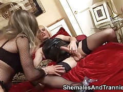 Group of shemales have fun with a double dildo