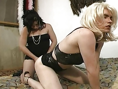T-Girl on Top HOT Movie - Americana